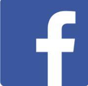 Facebook logo mini