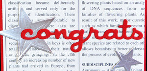 Another DIY Congratulations Card using Thinlits (Masculine Card Idea)