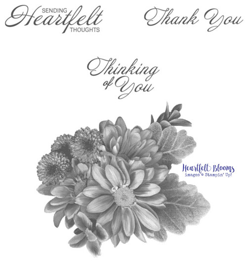 Stampin-Up-Heartfelt-Blooms-_-set-of-4