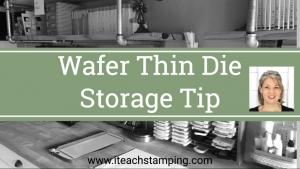 Wafer Thin Die Storage Tip