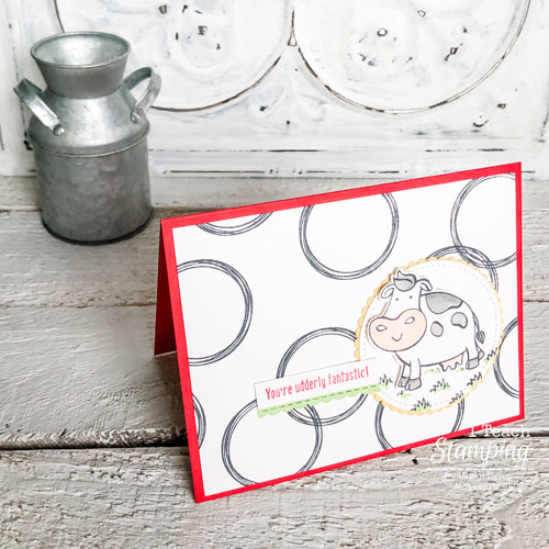 Stampin Up Swirly Frames Card Idea | Final project