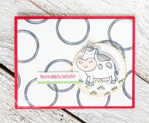 Stampin Up Swirly Frames Card Idea
