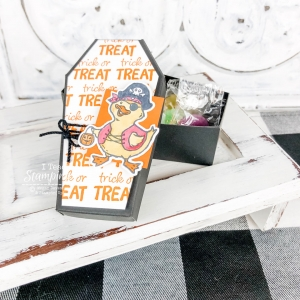 Adorable Coffin Treat Boxes