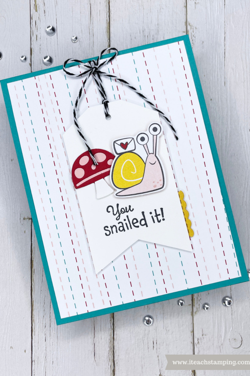 Snailed It Bundle From Stampin Up