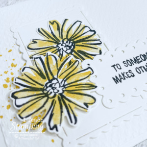 Color & Contour From Stampin Up